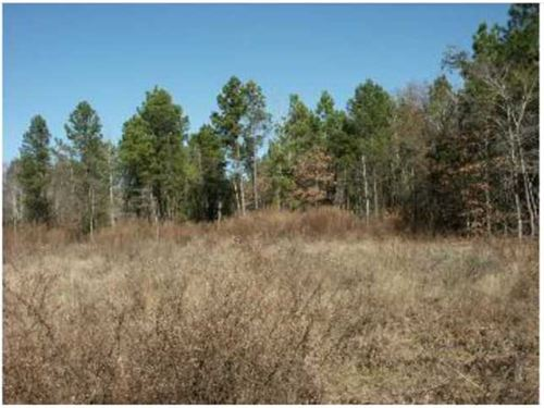 117.84 Acres For Sale : Jacksonville : Cherokee County : Texas