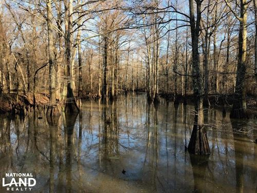 70 Acres Deer & Duck Hunting Near : Biscoe : Prairie County : Arkansas