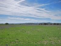 Usable 40 Acre Parcel : Lockwood : Monterey County : California