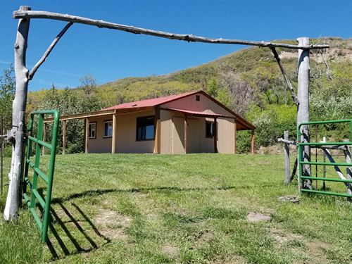 41 Acres Rustic Cabin Western : Collbran : Mesa County : Colorado