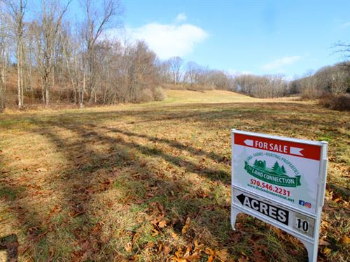 11 Acres In Central Columbia School : Bloomsburg : Columbia County : Pennsylvania