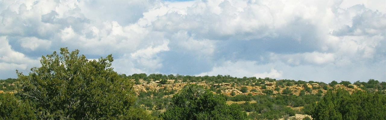 Az Wilderness Homestead $341 Mo : Saint Johns : Apache County : Arizona