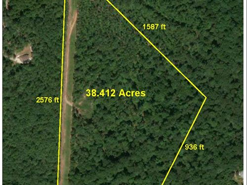 Wooded 38 Acres : Griffin : Spalding County : Georgia