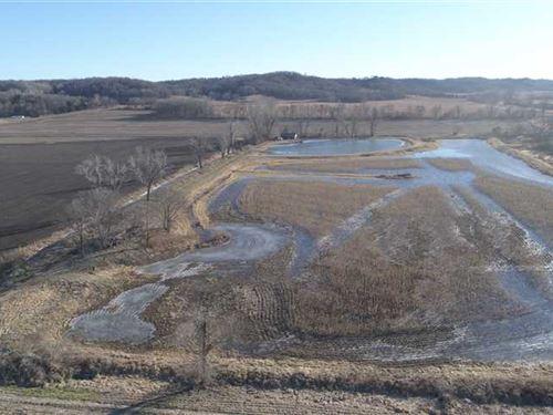Squaw Creek Refuge, Honey Hole : Mound City : Holt County : Missouri