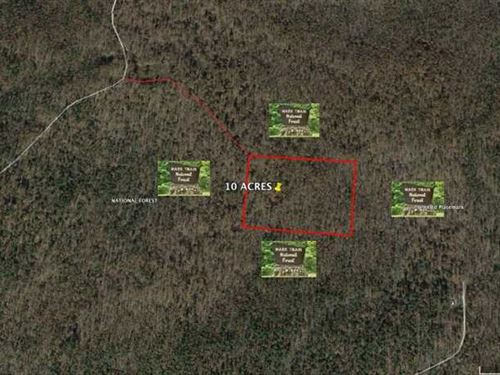 10 Acres Surrounded by Mark Twain : Poplar Bluff : Butler County : Missouri