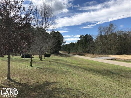 Rose Hill Homesite/Timberland : Dozier : Covington County : Alabama