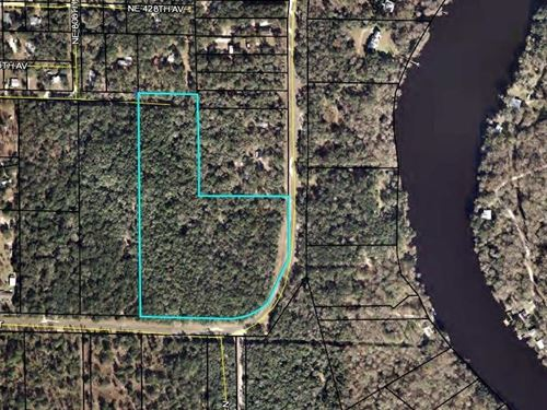 15 Acres, Old Town, Dixie County : Old Town : Dixie County : Florida