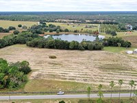 Lake Beth Lakefront Lots : Weirsdale : Marion County : Florida