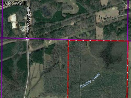 Hunting-Timber Tract : Demopolis : Marengo County : Alabama