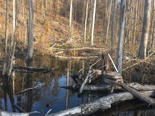 50 Acres In Attala County In Kosciu : Kosciusko : Attala County : Mississippi