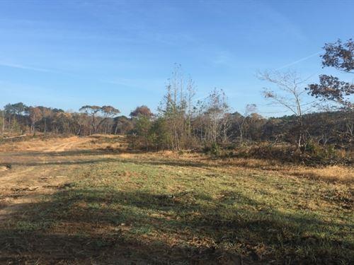 49 Acres In Attala County In Kosciu : Kosciusko : Attala County : Mississippi