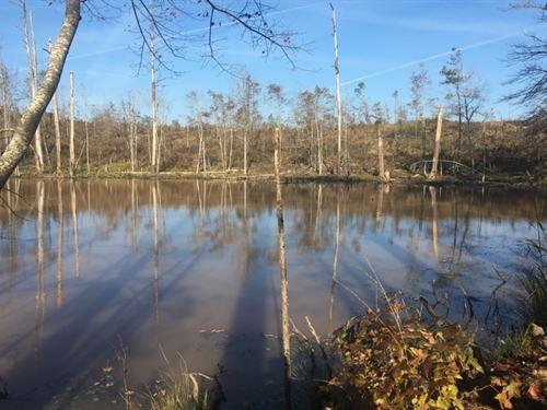 32 Acres In Attala County In Kosciu : Kosciusko : Attala County : Mississippi