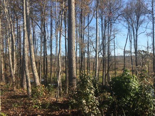 29 Acres In Attala County In Kosciu : Kosciusko : Attala County : Mississippi