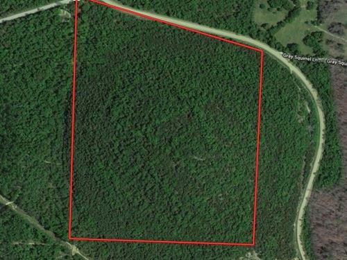 Acreage Close To Mountain Home : Norfork : Baxter County : Arkansas