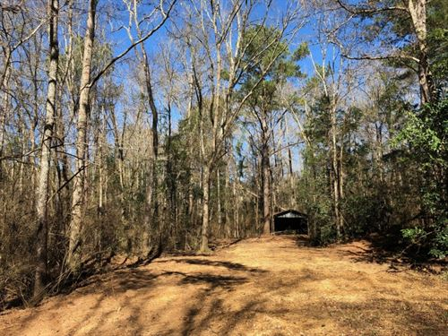 26.13 Acres In Npsd : Summit : Pike County : Mississippi