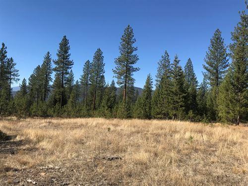 Montana Land For Sale : Plains : Sanders County : Montana