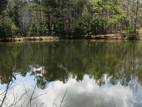 Private 72 Acres With Pond : Wadley : Clay County : Alabama