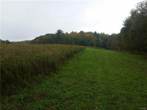 Great Hunting,1/2 Wooded 1/2 Open : Marathon : Cortland County : New York