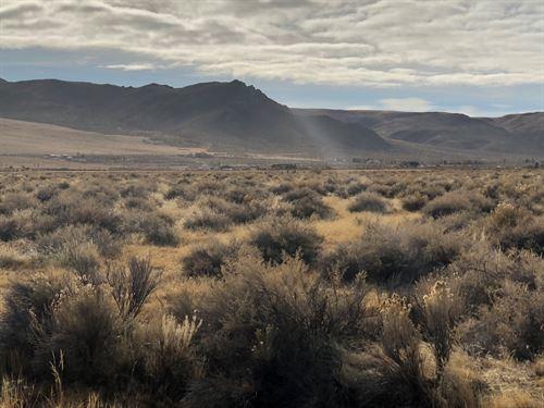37+ Acres Ranch Land Western Nevada : Reno : Washoe County : Nevada