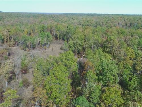 10 Acres At Chalk Bluff : Eminence : Shannon County : Missouri
