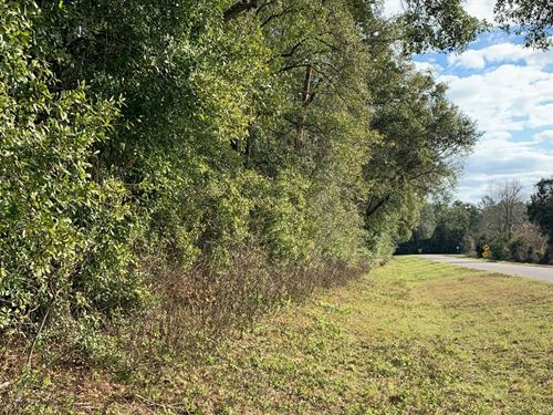Perfect Country Setting, 19 Acres : Mayo : Lafayette County : Florida