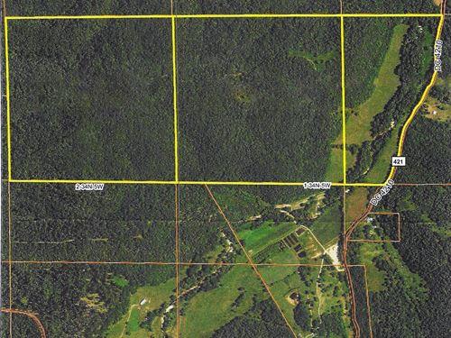 Hunting / Recreation / Pasture Land : Salem : Dent County : Missouri