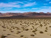 California Legacy Investment : Amboy : San Bernardino County : California