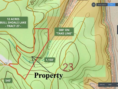 12 Acres, 300' On The Take Line : Branson : Taney County : Missouri
