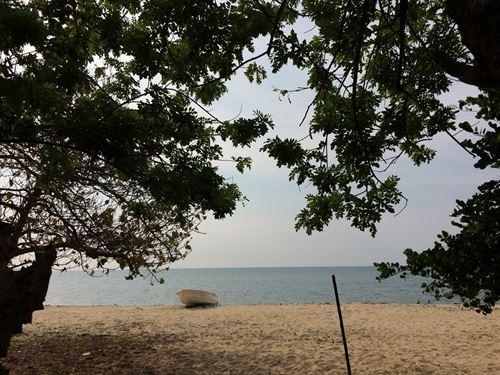 Beachfront-Caribbean Sea, 15 : Trujillo : Honduras