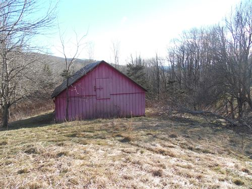 Property Over 950 Feet Creek : Troutdale : Grayson County : Virginia