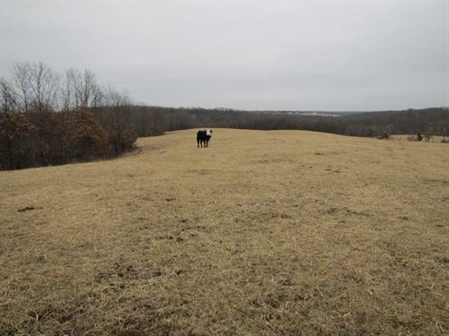 Mo Hay Ground / Pasture For Sale : Novinger : Adair County : Missouri