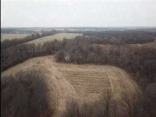 Excellent Hunting With Tillable ac : Asbury : Jasper County : Missouri