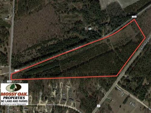 Under Contract, 25 Acres of Timbe : Raeford : Hoke County : North Carolina