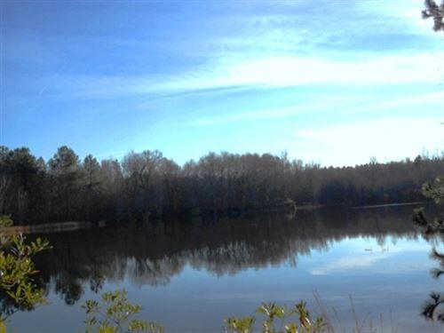 Brinson Pond : Swainsboro : Emanuel County : Georgia