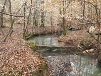 Hbu Timberland With Creek : Cataula : Harris County : Georgia