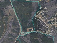 75 Acres Near Chattahoochee River : Lagrange : Troup County : Georgia