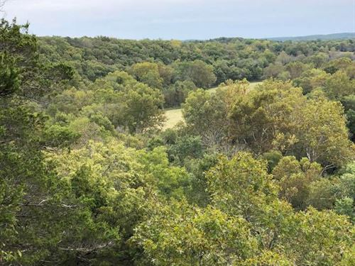 River, Springs, Marketable Timber : Licking : Texas County : Missouri
