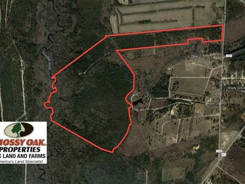 Under Contract, 139 Acres of Timb : Raeford : Hoke County : North Carolina
