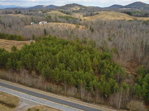 Wooded, Private, Peaceful : Long Creek : Oconee County : South Carolina
