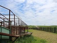 Missouri Ozarks Cattle Ranch : Plato : Texas County : Missouri