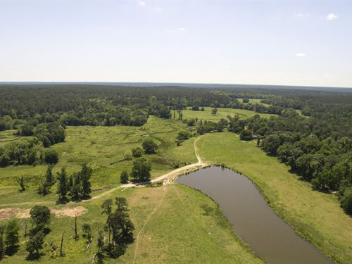 323 Acres X-4 Ranch : Huntsville : Walker County : Texas