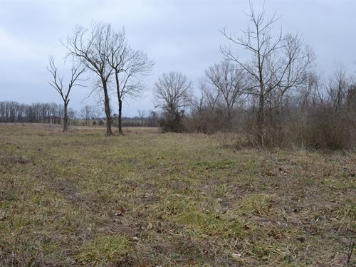 Land For Sale In Southern Missouri : West Plains : Howell County : Missouri