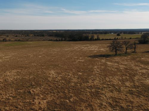 Nice 19 Acres Ready For Your Home : Rockdale : Milam County : Texas