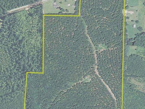 55+ Acres Pleasant Hill Road, 6044 : Rockmart : Polk County : Georgia
