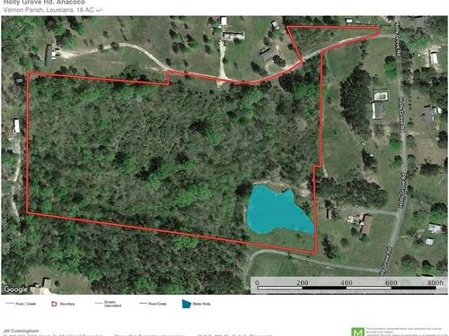 Holly Grove Road Tract, Vernon Par : Anacoco : Vernon Parish : Louisiana