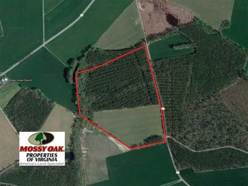 Under Contract, 42.6 Acres of Tim : Wakefield : Sussex County : Virginia