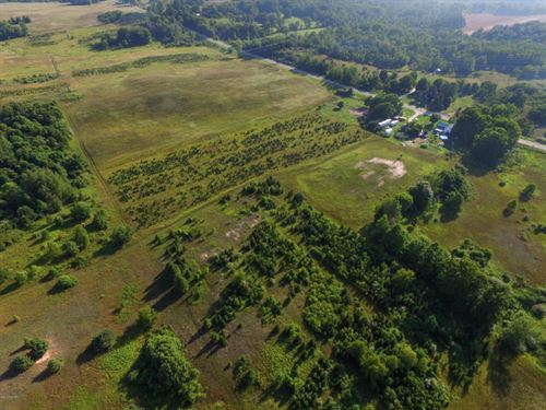 Versatile Acreage In Oceana County : Hart : Oceana County : Michigan