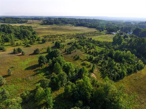 Rolling Acreage With Creek : Hart : Oceana County : Michigan