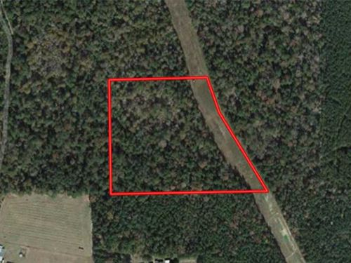 Excellent Hunting / Residential : Fred : Tyler County : Texas