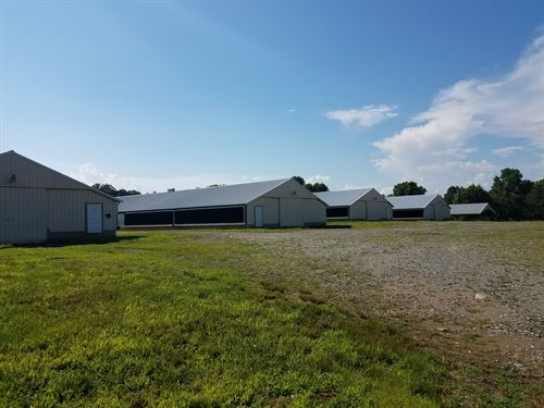12 House Broiler Poultry Farm : Ellijay : Gilmer County : Georgia